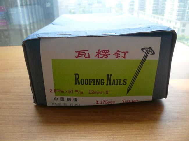 Galvanized Smooth Shank Umbrella Roof Nails ZJ-001