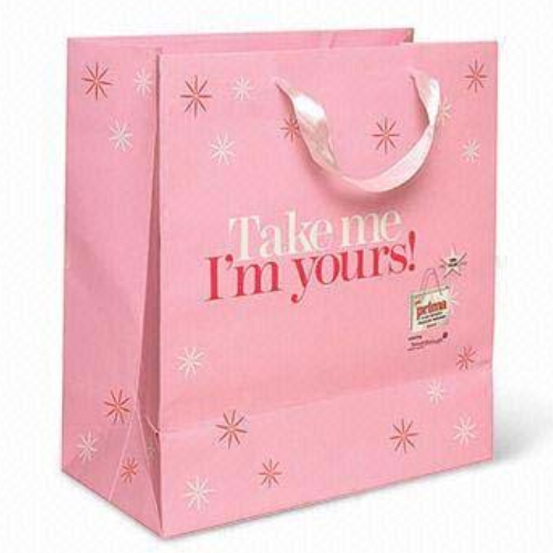 New customized red color Shopping gift paper bags with handle from China FS028