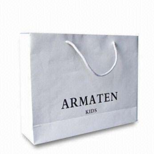 Printed custom made shopping paper bags with your own logo FS029