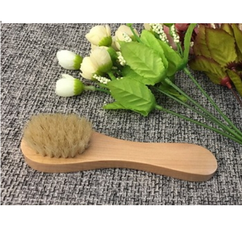 Natural Bristle Wood Handle Cleaning Brush   FD11