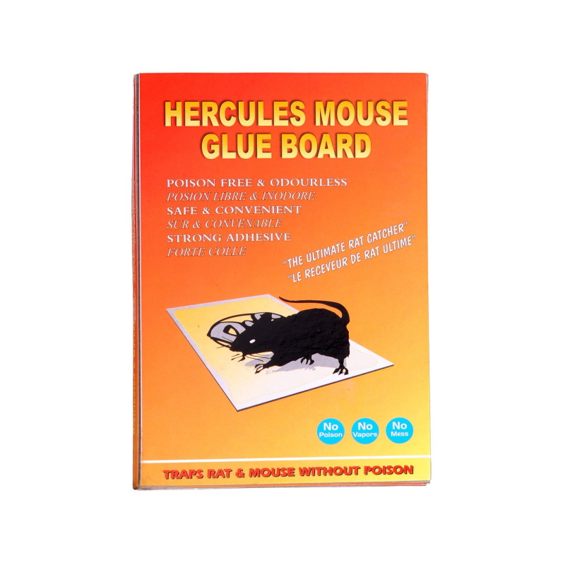 Good Quality Mouse Glue Trap  SQ-116