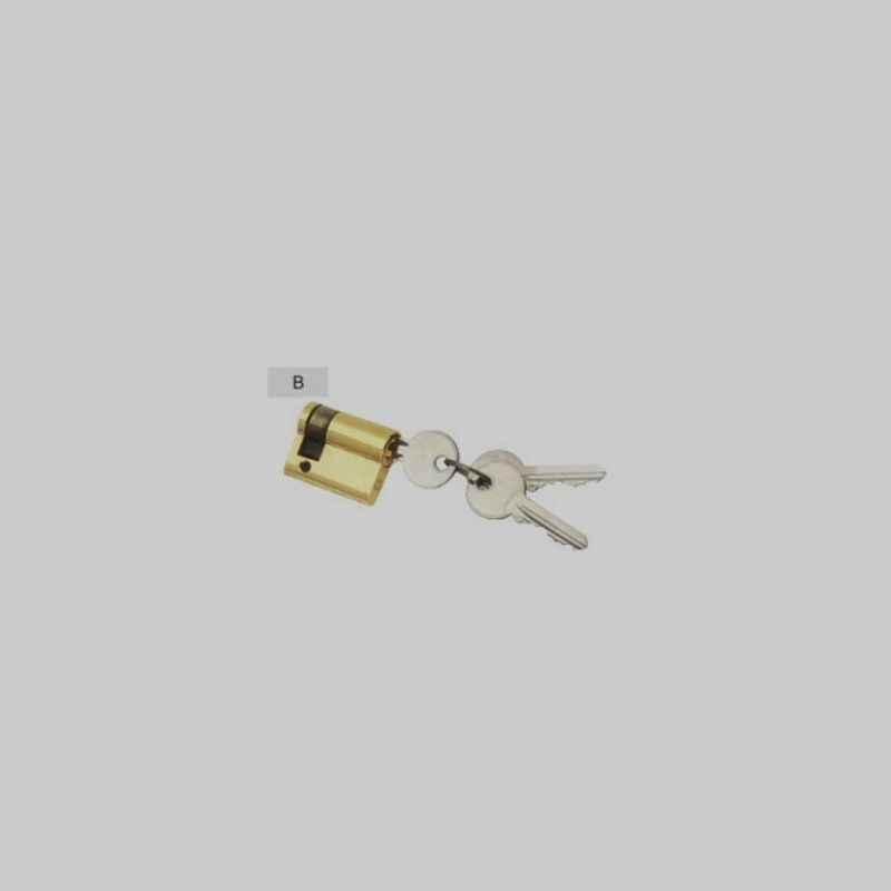 Competitive Original Brass Lock Cylinder SS-016R