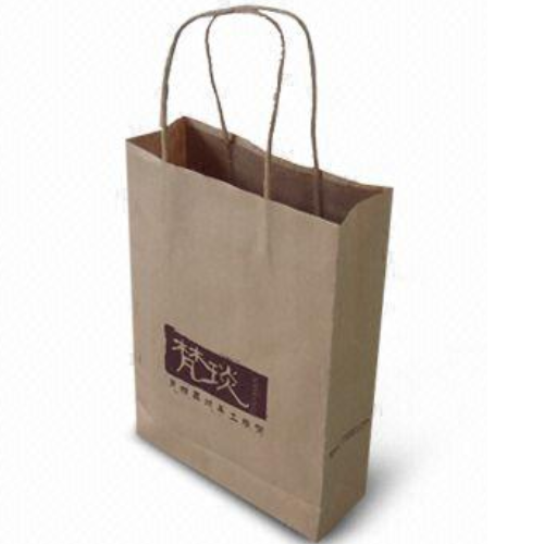 Custom Printed Luxury Gift Shopping Big Strong Paper Bags FS027