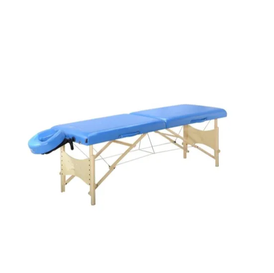 Beauty SPA Electric Facial Bed