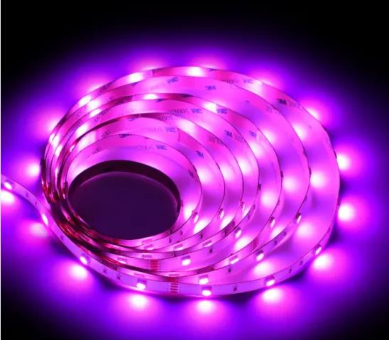 New Style Wholesale 5050 RGB Rope LED Strip Light for Bar