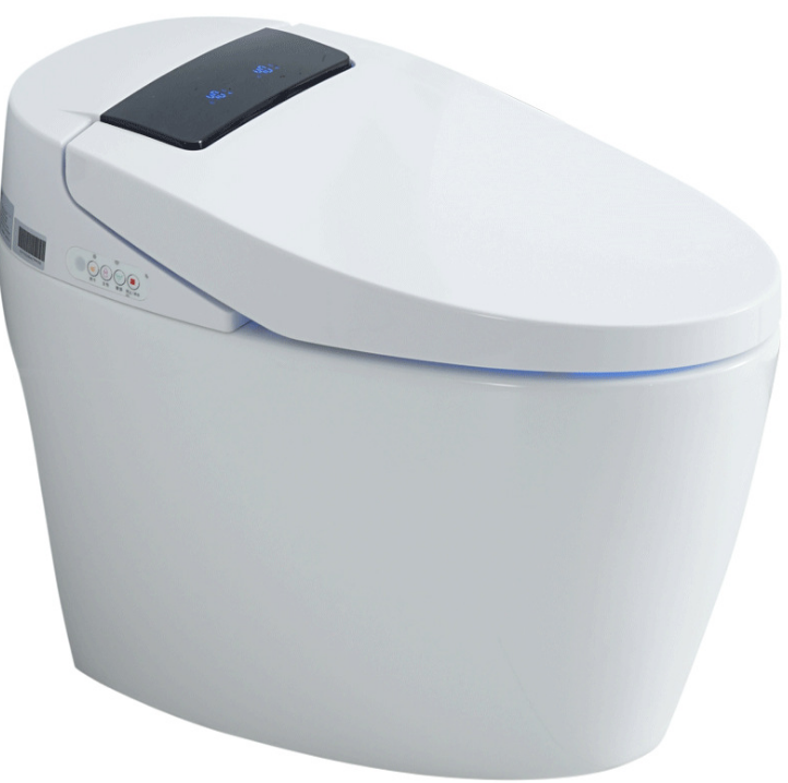 Household Water-Tank-Free One-Piece Toilet Automatic Flip Electric Multifunctional Instant Hot Toilet